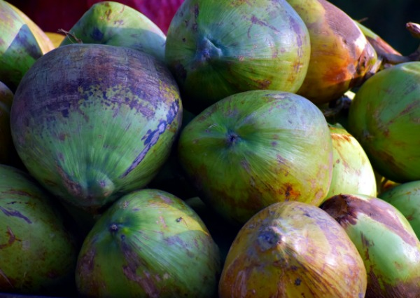 African Coconuts
